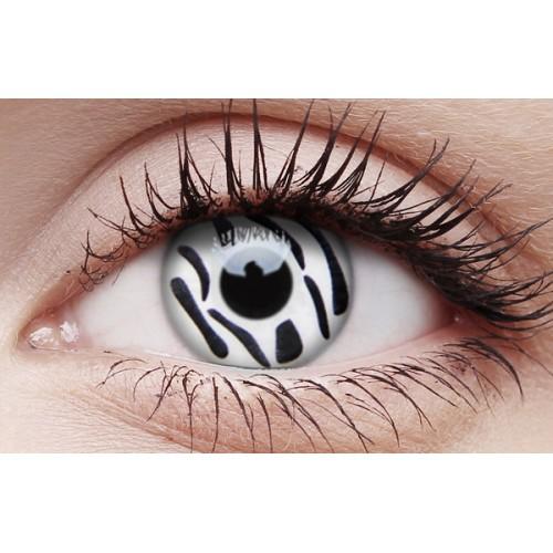 Image of Zebra - Crazy Lens non-prescription (2 pack)
